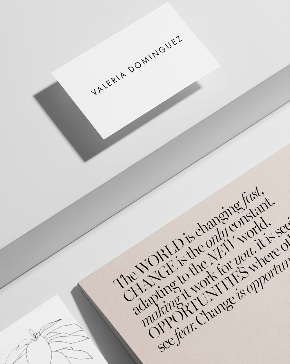 branding-valeria-dominguez-behance-2.jpg