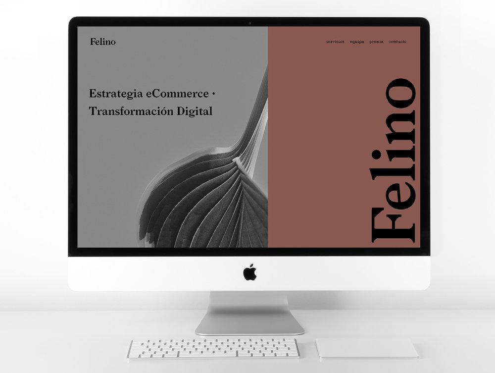 pagina-web-01.jpg