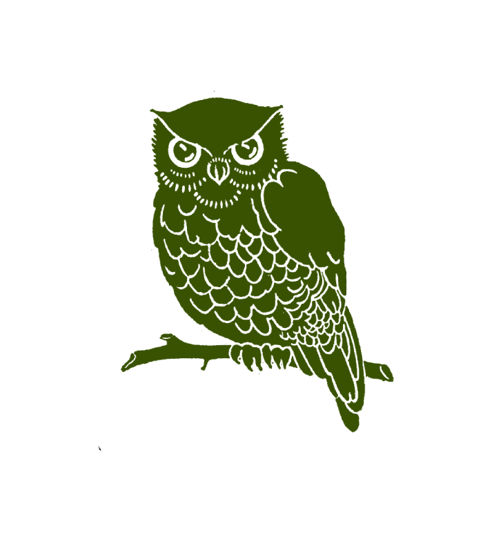 Green Owl Refabbed - BELLEVILLE, IL