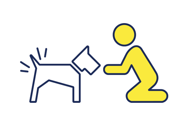 OUR MISSION - To help humans connect with their dogs by removing barriers to clean, healthy dogs.