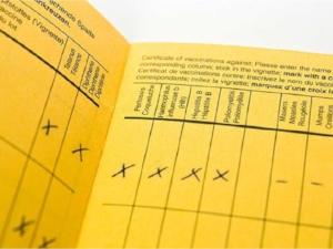 ontarios-yellow-card-immunization-record-form-canadian-fou.jpeg