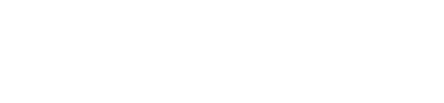 Hotel Security Group