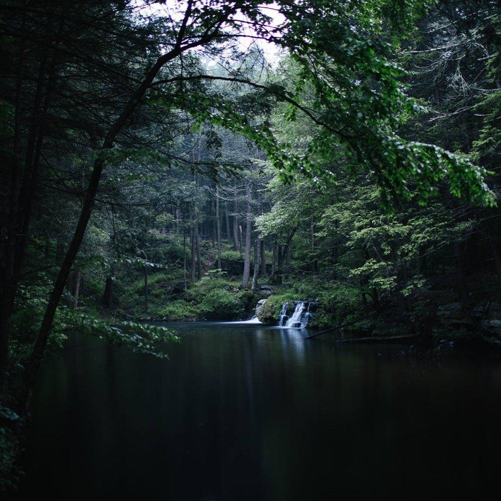 The Environment& History -