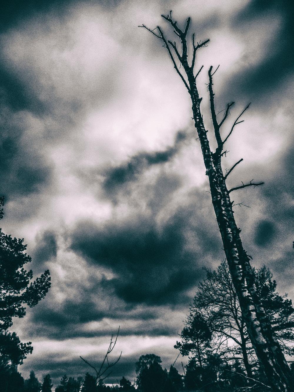 Storm dreiging