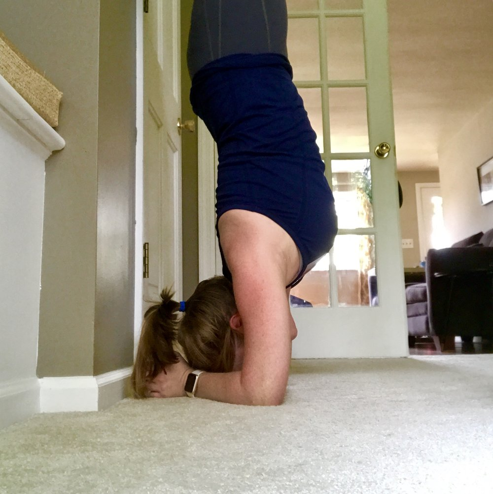 Working on my forearm stand