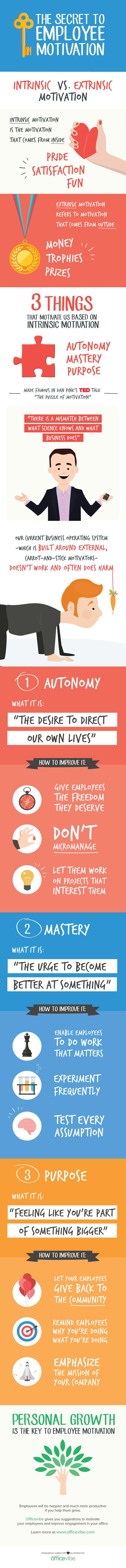 Employee_Motivation-Info.jpg