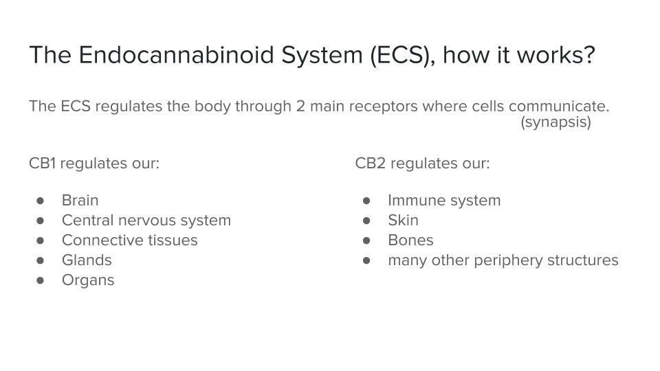 ECS_ An introduction (3).jpg