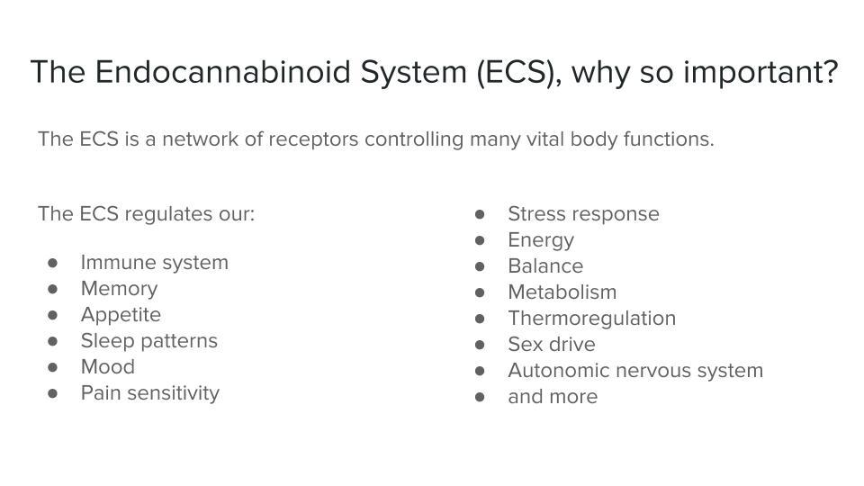 ECS_ An introduction (2).jpg