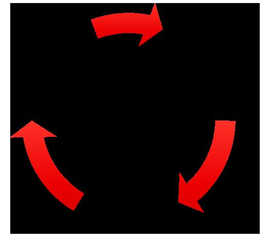 coreloopdiagram.png