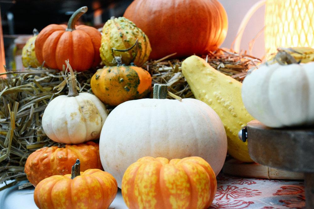 Heartfelt Pumpkins.jpg