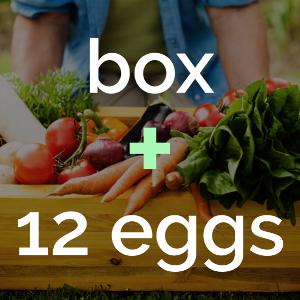 box + 12 eggs.png