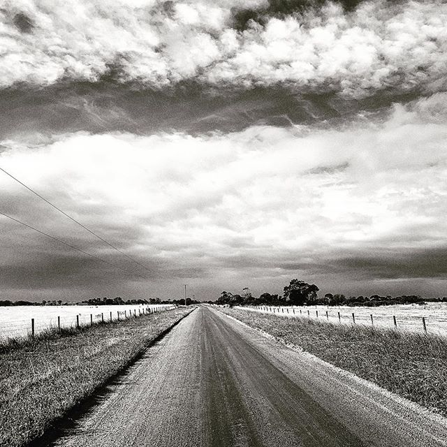 We were taken on a rather large detour today while visiting growers and found ourselves alone.  5 minutes later we were being covered by heavy rain, so it was nice to capture this calm moment of serenity.  #supportlocalfarmers #supportlocal #fruitandveg #wastefree #parkigrocer #blackandwhite