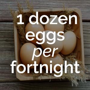 12+eggs+per+fortnight.png