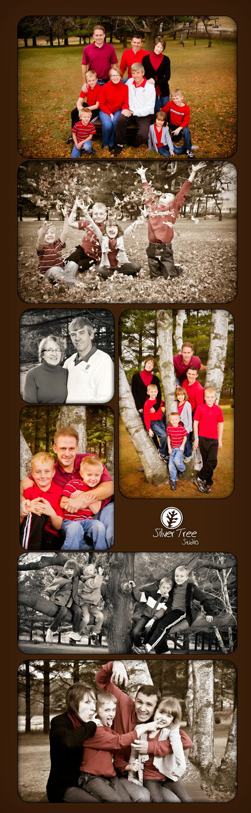 Pictures by Silver Tree Studio, Mount Horeb, WI