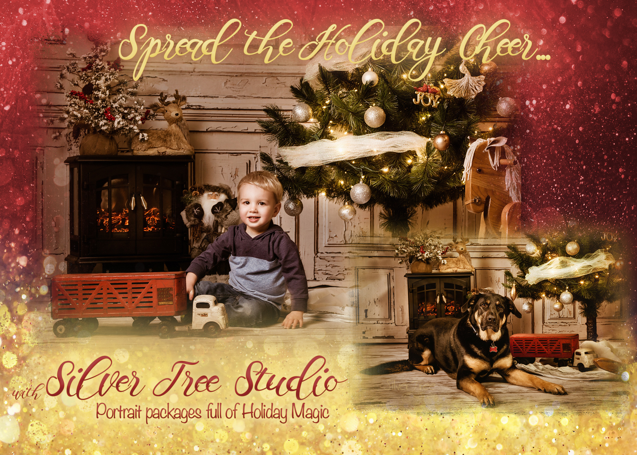 Silver Tree Studio, Photography, Christmas, Holiday, Specials, Limited Edition, Pictures, Children, Kids, Pets