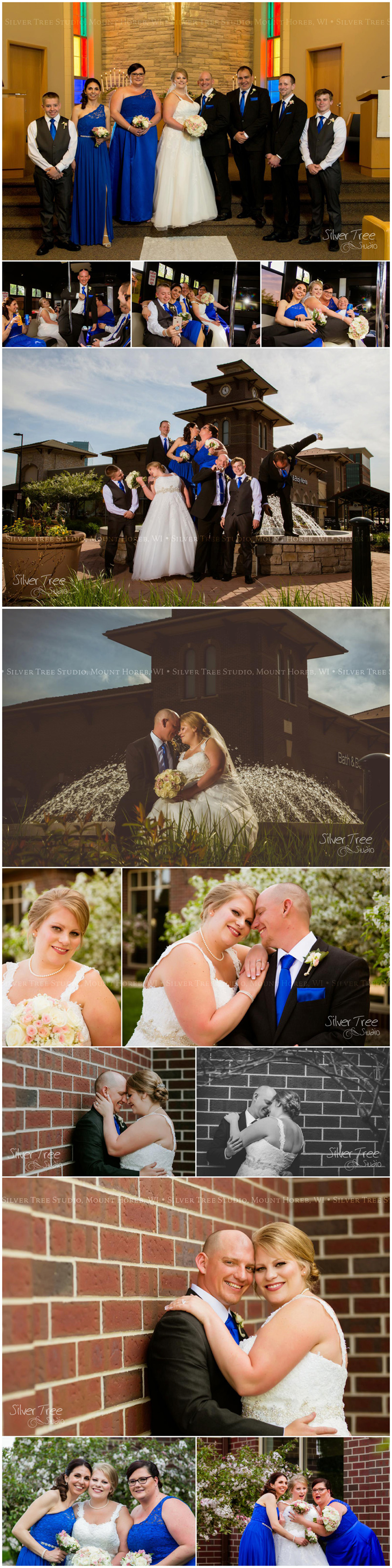 Silver Tree Studio - Professional Photography based in South Central Wisconsin, Wedding, Engagement, Portrait