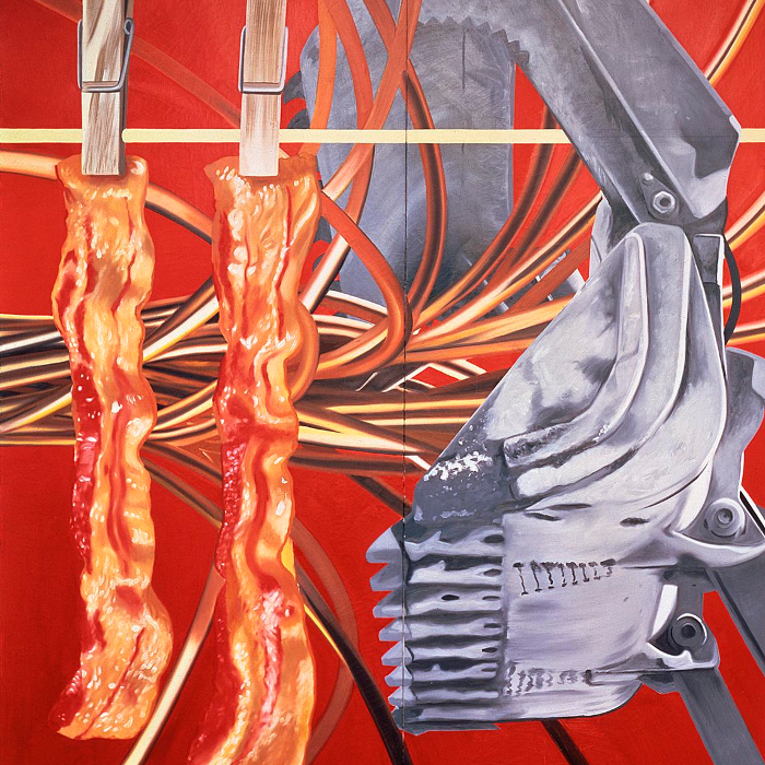 Cover art:  James Rosenquist ,  Industrial Cottage  (detail)