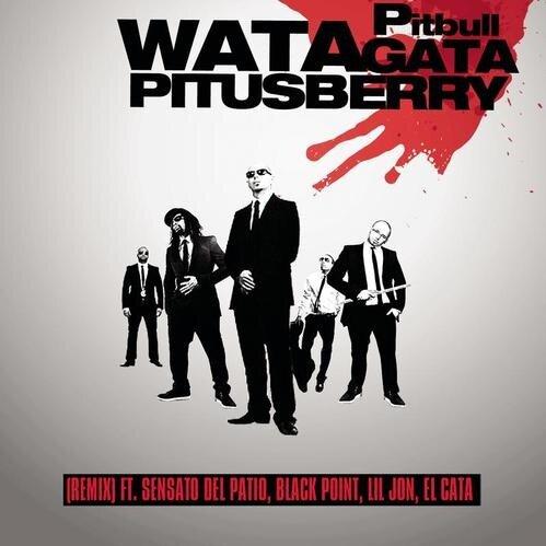 "71. Pitbull ft. Sensato Del Patio, Black Point, Lil Jon & El Cata, ""Watagatapitusberry (Remix)"""
