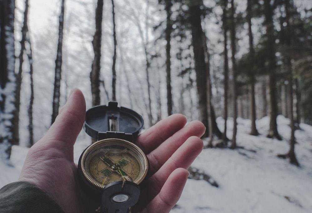 compass-woods 1.jpg
