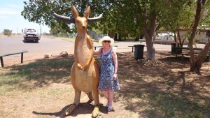The Buffaroo at Camooweal.