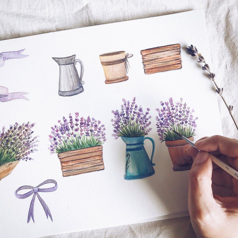Lavender Garden.JPG