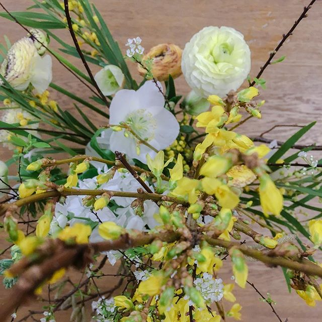 @thisflorallife will be putting together a beautiful scent workshop for us to get our noses into the beautiful Spring season. Here are a few shots of our beautiful Winter Hellebores we drew last January.  Few tickets available for Saturday 30th March's Yoga & Wellness Retreat if anyone is interested at the wonderful @cowdrayestate we will also be having a South Bath with @serenitythroughsound  #liveinspired #mindbodysoul #mindbodygram #mindbodyspirit #raiseyourvibrations #holisticliving #greenlifestyle #healthyhappylife #wellnessjourney #hippielifestyle #nourishyourself #justbreathe #lookwithin #mantramonday #moveyourbody #hippievibes  #soundtherapy #thesoulfullife #soulfulliving