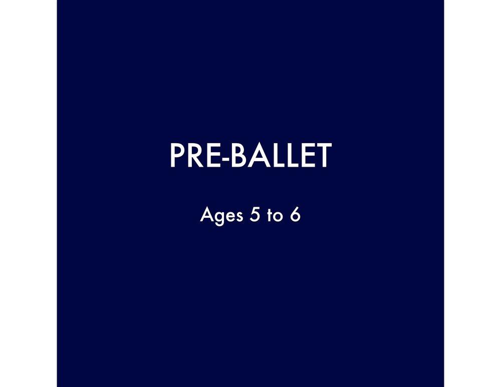 PRE BALLET BUTTON-page-0.jpg