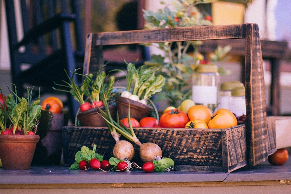 vegetable-basket-349667_960_720.jpg