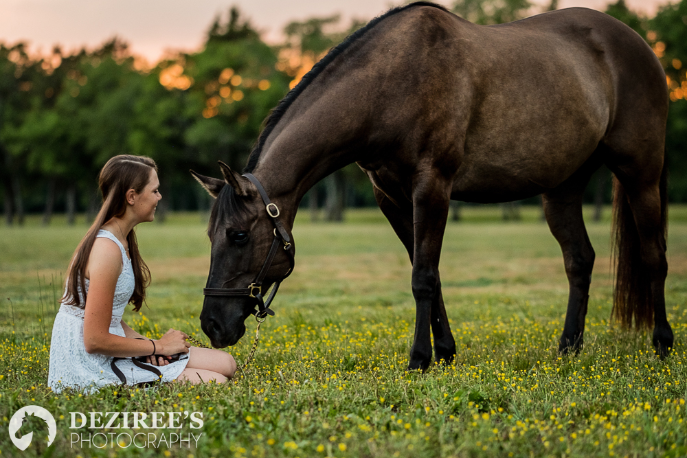 Nashville equestrian photography session available in August 2018