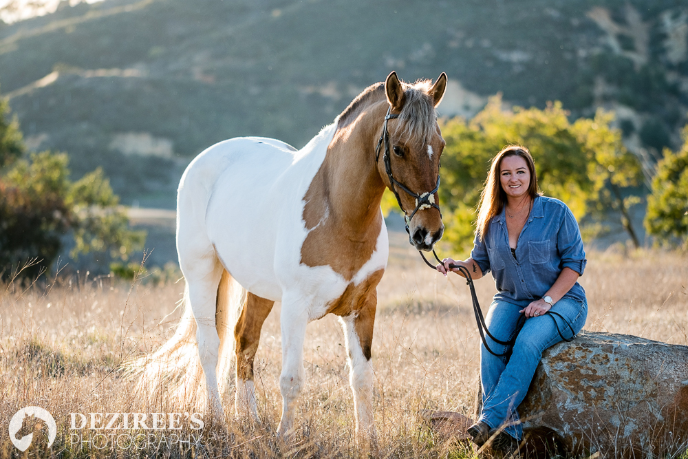Where to have your Michigan equestrian photo session.