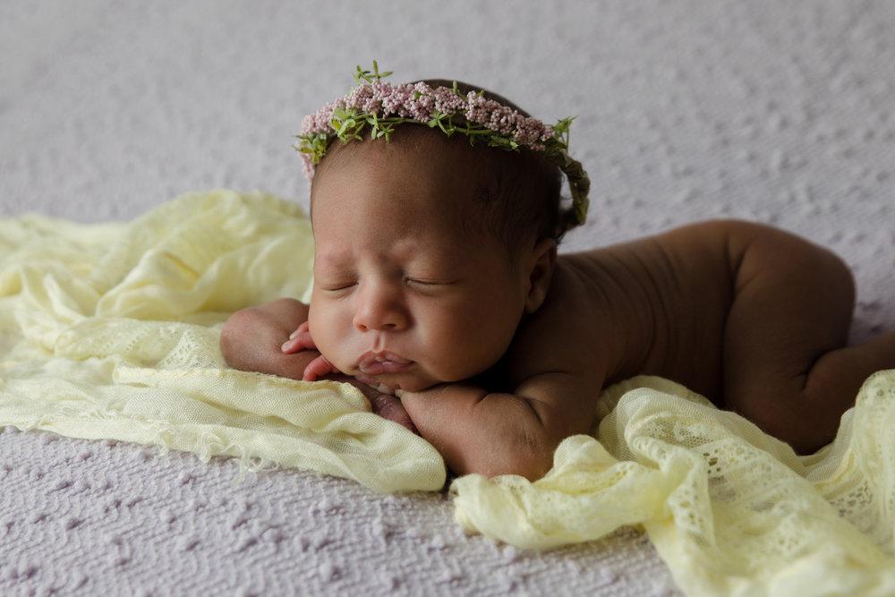 Newborn Photos in Columbus Ohio