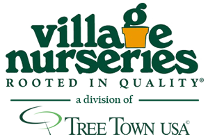 village nurseries logo.png