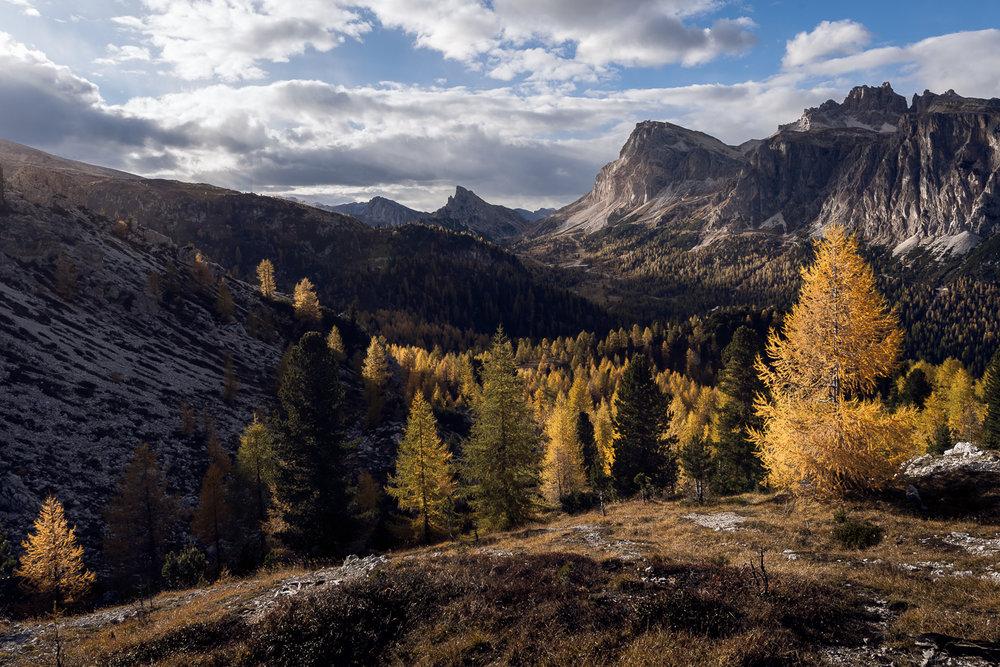 Fabio Gervasoni landscape (8).jpg