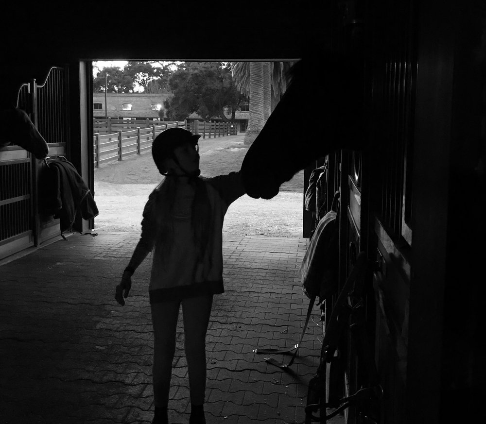 Girl and horse b and w.jpg