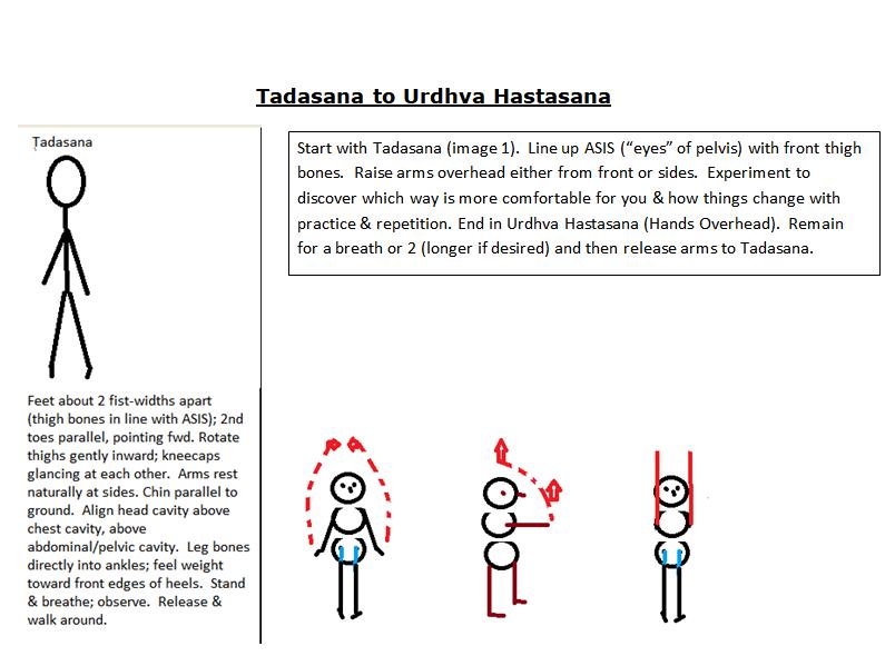 Tadasana to Urdhva Hastasana 2.png
