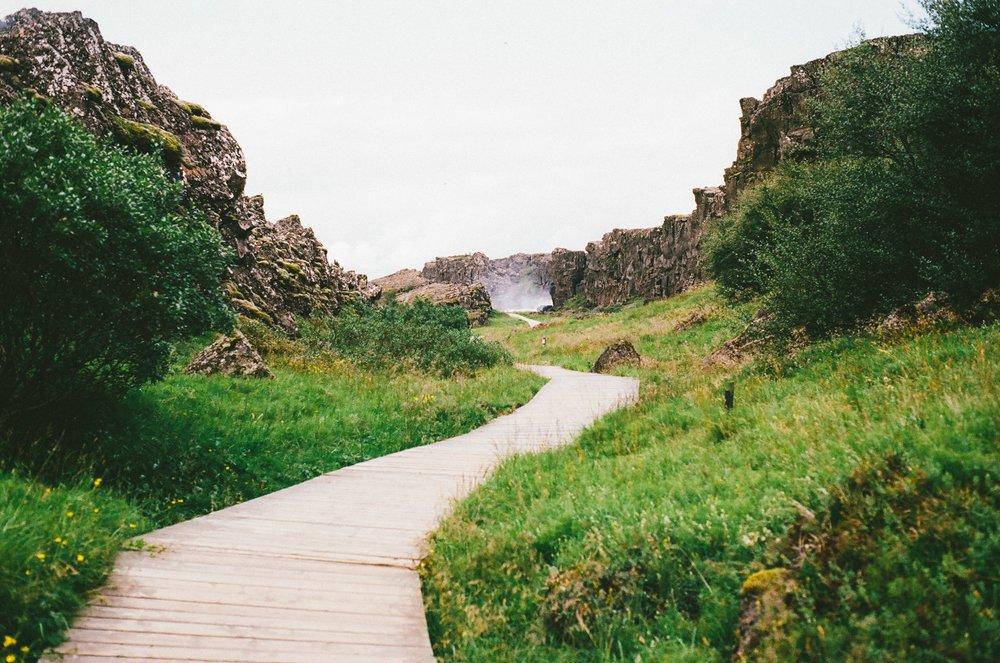 hiking-path-pathway-4805.jpg