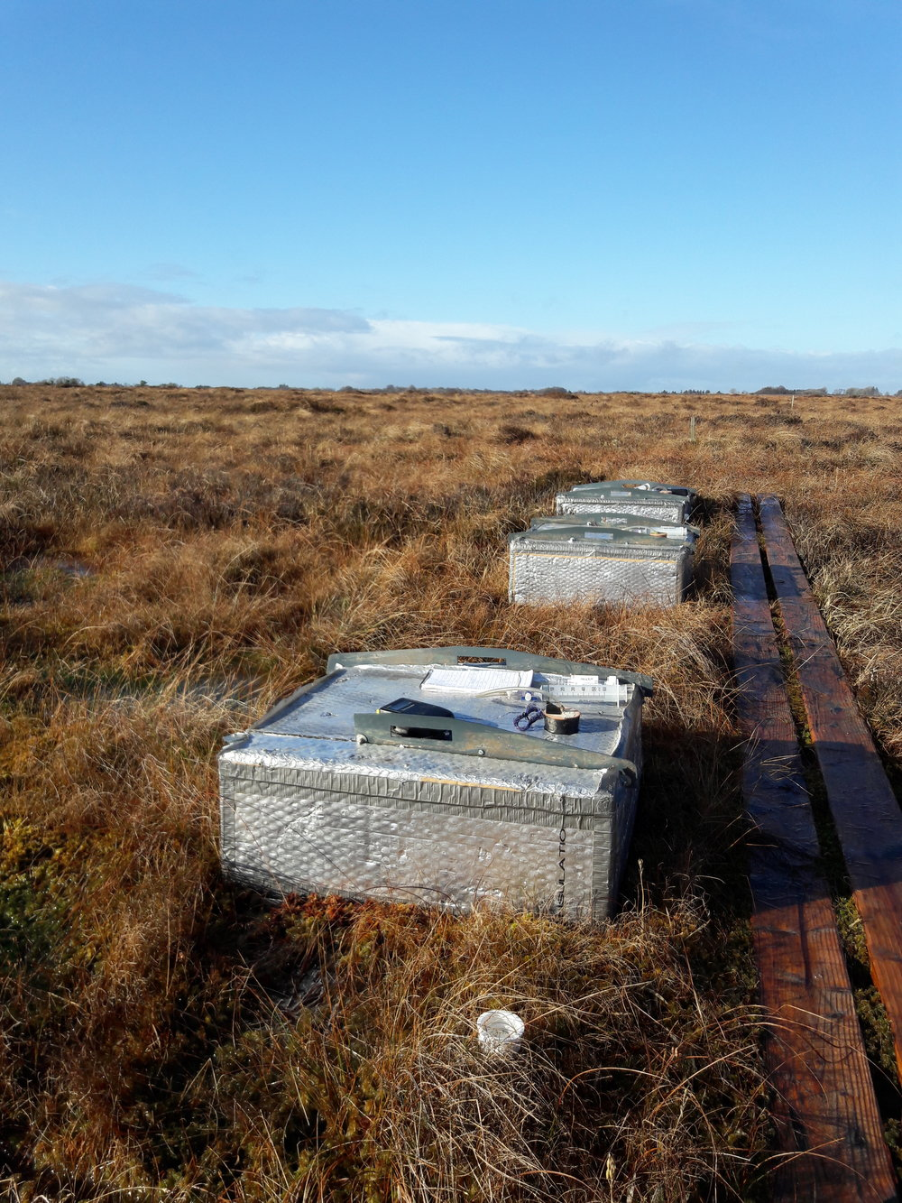 Chambers employed to measure methane and nitrous oxide fluxes at the rewetted raised bog at Moyarwood, Co. Galway. Photo: David Wilson.