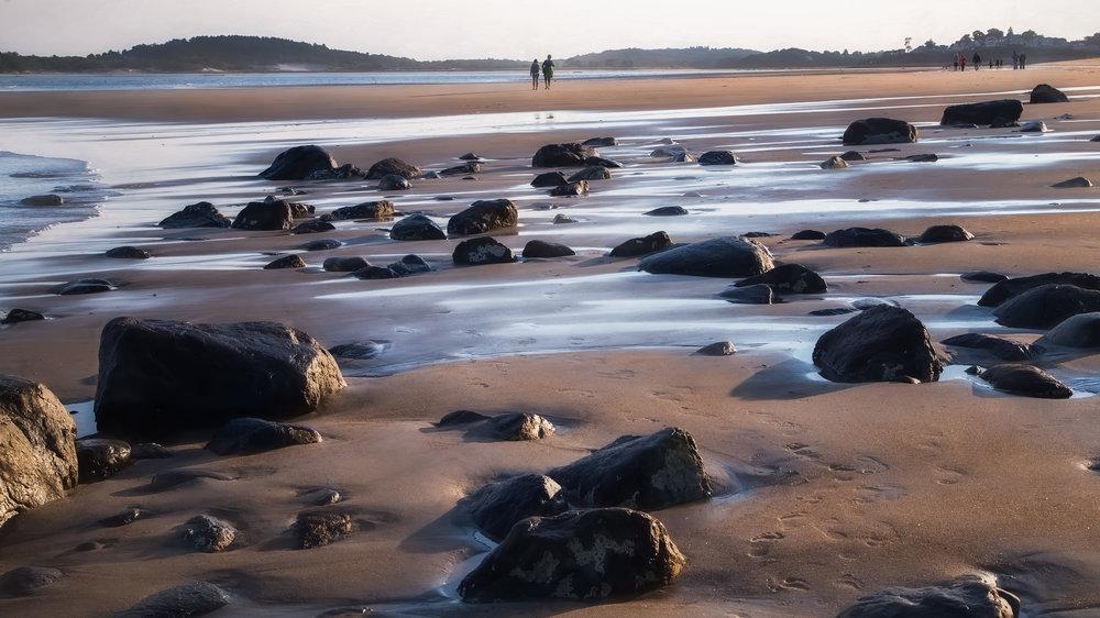 Will_Nourse_Low Tide - Sandy Point.jpg