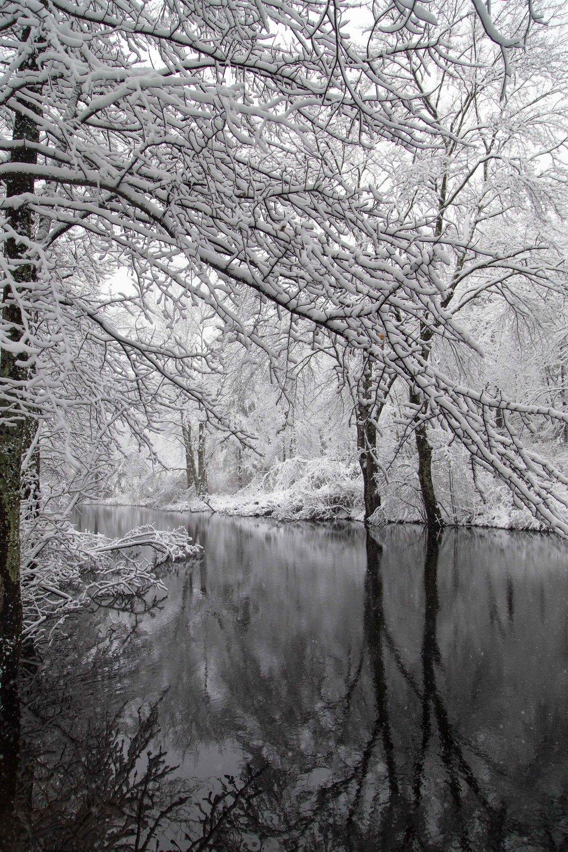 Will_Nourse_Powwow Winter.jpg