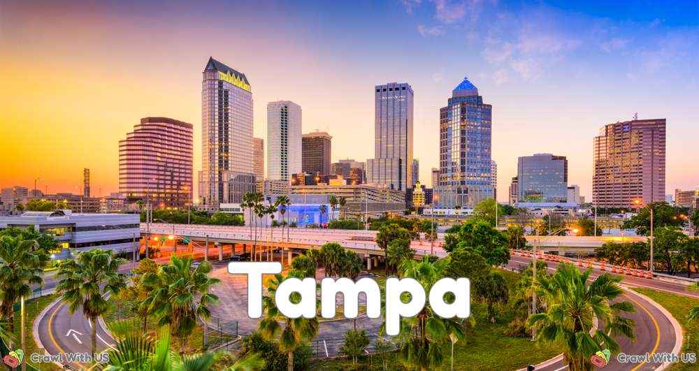 Tampa - Color Skyline.png