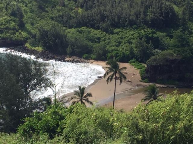 Lawai Beach, green sea turtle sanctuary.
