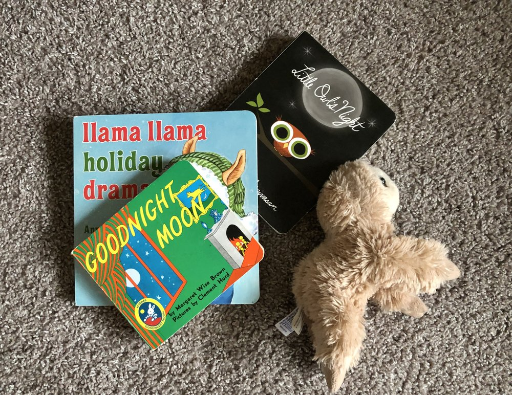 stuffed-toy-and-childrens-books.JPG