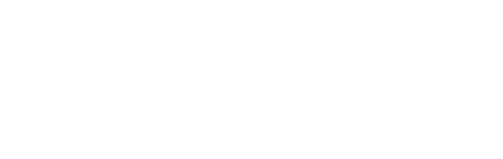 eversol final logo transparent white.png