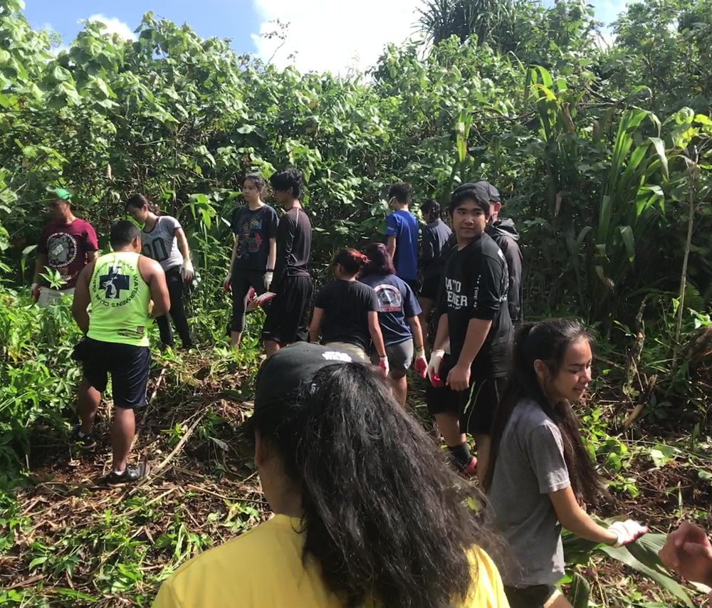 Student volunteers from the Okkodo Ambassador's Club clearing invasive Guatemala grass (Tripsacum andersonii) in the fruit forest - an area of Sågan Tinanom that was once lived in, prior to the 1950's. (January, 2017)