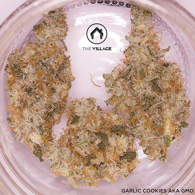 Garlic Cookies grown by @_thevillage is currently available! 🔥🔥🔥
