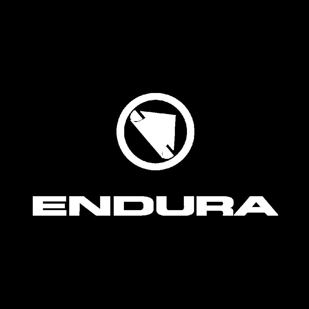 Endura Logo BK (1).png