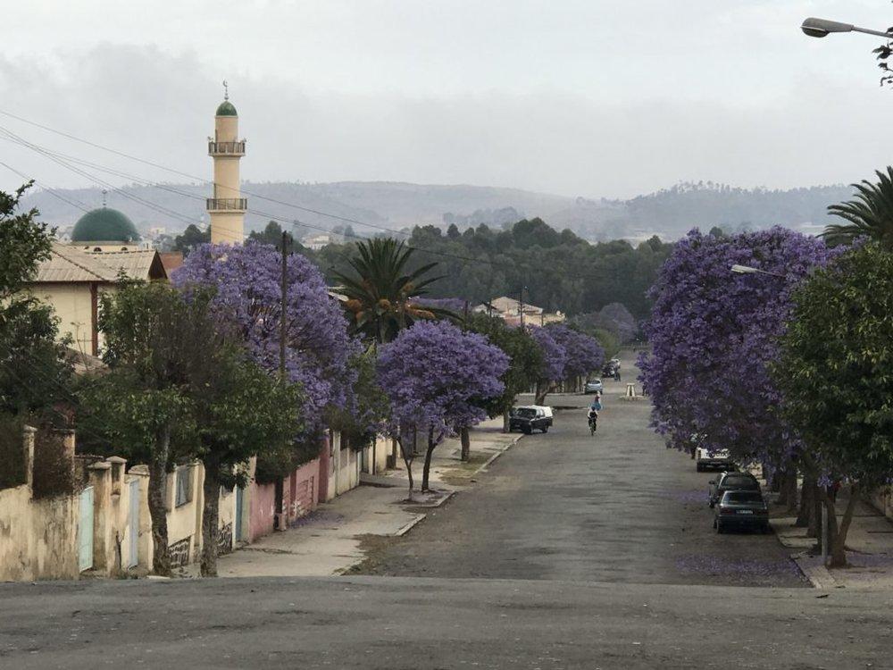 Beautiful colorful streets of Asmara