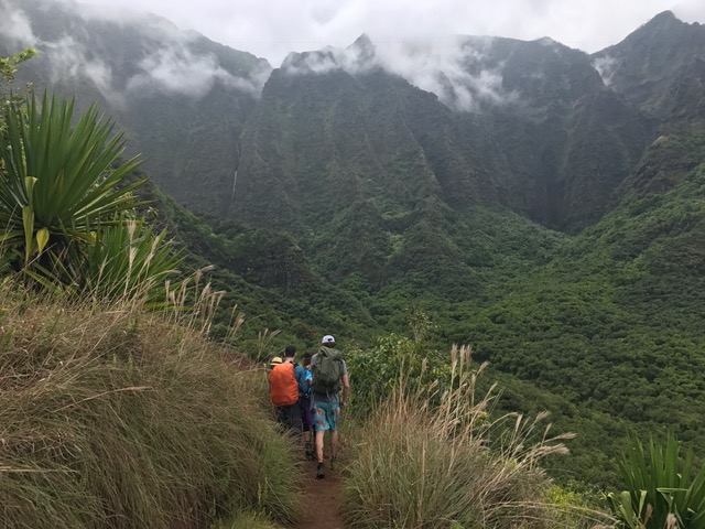 Green plants and people in the mountains of Kauai