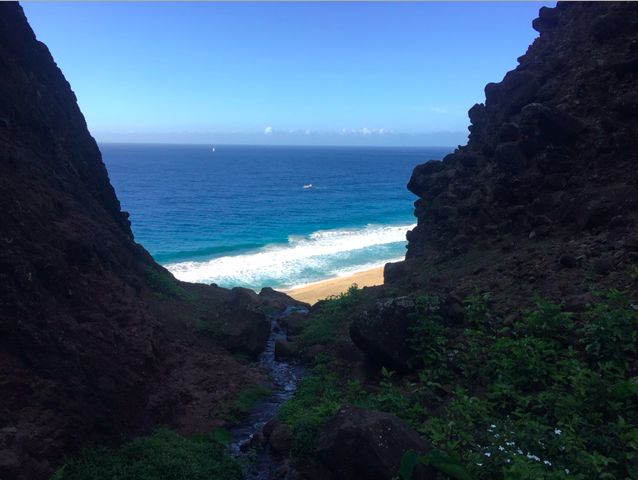 Sunny beach and beautiful ocean in Kauai
