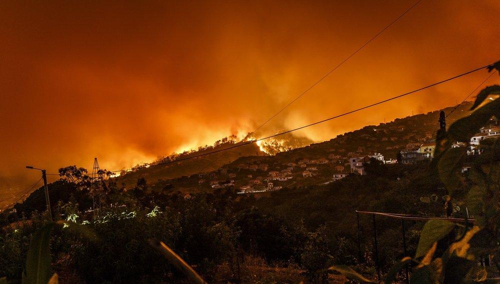 forest fire.jpeg